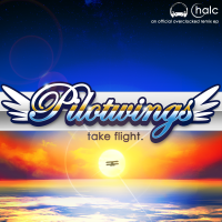 Pilotwings: take flight. front cover